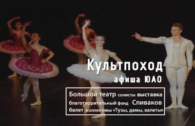 «Культпоход»: Благотворительный фонд Владимира Спивакова и солисты Большого театра выступят на площадках Южного округа