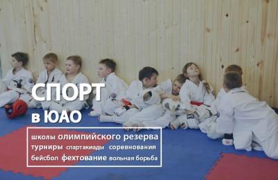 «Спорт в ЮАО»: где в Южном округе «выращивают» чемпионов