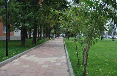 Южный округ стал рекордсменом в Москве по озеленению