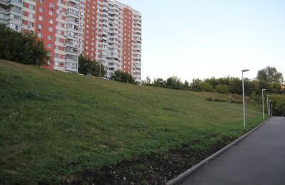 Жители района вошли в число самых «активных граждан» в голосовании «Твой газон — твои правила»