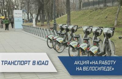 «Транспорт в ЮАО»: где в округе есть пункты проката велосипедов, и какие сюрпризы ждут участников осеннего велопарада
