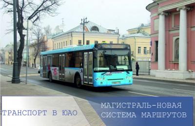 «Транспорт в ЮАО»: какие маршруты автобусов по новой системе «Магистраль» будут курсировать на территории Южного округа
