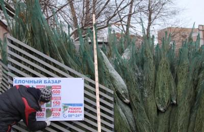 В преддверии Нового года жители района смогут купить ели по трем адресам