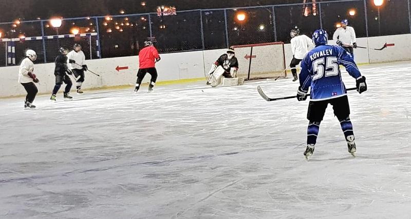хоккеисты-вертикаль-вк-4
